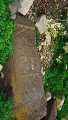 Selçuklu mezarlığından