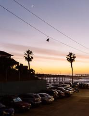 (ELMUNDOPORMISOJOS) Tags: nikond600 sandiego oceanbeach california streetphotography sunset