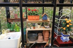 9. Mini Greenhouse (Foxy Belle) Tags: dollhouse miniature 112 scale greenhouse diorama garden plant potting shed