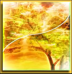 Tree in Spring (♣Cleide@.♣) Tags: © ♣cleide♣ brazil 2017 photo art digital ps6 abstract texture tree spring artdigital exotic netartii sotn awardtree