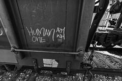 (o texano) Tags: houston texas graffiti trains freights bench benching human wh a2m adikts