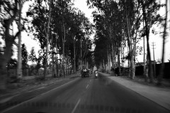 Travel through country roads (Smevin Paul) Tags: bangalore black white bw road trees travel window country village nandi hills through roads