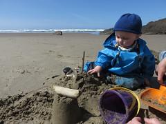 sand master (carolyn_in_oregon) Tags: crescentbeach cannonbeach pacificocean ecolastatepark coast jacob