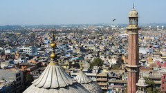 IMG_26748 (Manveer Jarosz) Tags: bharat delhi hindustan india islam islamic jamamasjid muslim ncr olddelhi bird cityscape dome flying minaret mosque top tower view