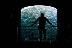Fish prison (culina.grgur) Tags: tenerife loro fish watching dark canon sigma 18 35 f18 travel