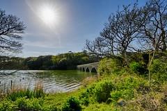 Eight Arch Bridge - Pembrokeshire, Wales (dejott1708) Tags: eight arch bridge wales pembrokeshire great britain united kingdom landscape sun hdr
