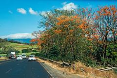 San Jose-Arenal Highway Traffic (fotofrysk) Tags: road hills trees landscape view traffic trucks sanjosearenalhighway highway1 ruta1 centralamericatrip costa rica sigma1750mmf28exdcoxhsm nikond7100 201702069362