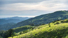 Russian Ridge to the Ocean (Matt McLean) Tags: bayarea california hills landscape midpeninsula mindegohill openspace russianridge lahonda unitedstates us