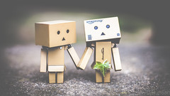 Holding Hands (#Weybridge Photographer) Tags: adobe lightroom canon eos dslr slr mk ii danbo danboard kiyohiko azuma manga cardboard box amazon robot character figure mkii couple handing hands