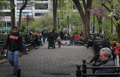 IMG_1370 (kz1000ps) Tags: newyorkcity nyc manhattan architecture urbanism cityscape unionsquare plaza pathway