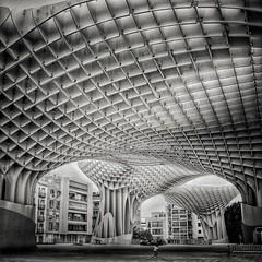 (Luca Strippoli) Tags: square squareformat bianconero bnw sevilla siviglia architettura art arte