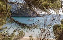 jlvill  496  Marco natural //Natural frame (jlvill) Tags: calas playas marcos naturaleza yates mar arboles paisajes vistas