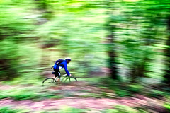 Vado al massimo (fil.nove) Tags: canong7x canon actionphoto panning compactcamera 1sensore mtb vtt mountainbiking mountainbike cannondale flas29 29er bike bici bicycle foresta bush alberi trees lanzo extremepanning motionblur sport sportphotographer piemonte green verde colori colours