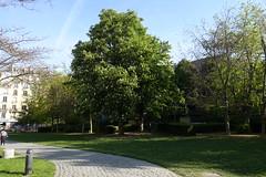 Jardin de l'Hôpital de Vaugirard @ Paris (*_*) Tags: paris france europe city 2017 april 75015 paris15 spring jardindelhôpitaldevaugirard park