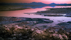 Atardecer en el Salar (josemcalvol) Tags: ngc magenta desert sunset atacama humedal salar ultima luz southern america parque nacional los flamencos chile desierto atardecer agua water reflections