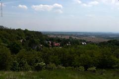 DSC_2602 (oria77) Tags: dolina bolechowicka krakow valley woodland poland