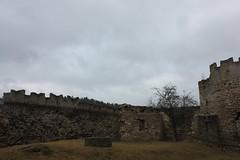 Burgruine Brandenburg (rikawaechter) Tags: brandenburg burg ruine schloss burgen burgenland mauern turm türme mittelalter ausflug ausflugsziel wanderung wandern wanderziel besuch urlaub sehenswürdigkeit sehenswert sachsenweimareisenach wald forst baum bäume alt antik