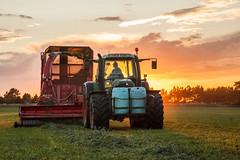 MartenSvensson_IMG_2787 (Bad-Duck) Tags: jordbruk fendt hack kalmarlantmän livsmedel livsmedelsproduktion traktor vall vallskörd åker öland