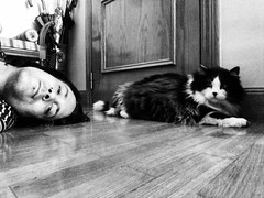 Salem y yo (Josu Sein) Tags: cat cats animals animalrights veganism antispeciesism portrait selfportrait cinematic expressionism monochrome blackandwhite mystery instagram littledoglaughedstories littledoglaughednoiret
