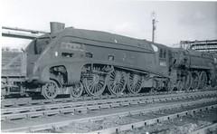 img671 (OldRailPics) Tags: steam locomotive british railways br train crewe works 71000 duke gloucester 60026 miles beevor