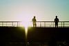 Bridge (Oleksii Leonov) Tags: bridge ukraine kyiv киев a700 мост украина чайка chaiky sonyalphadslr чайки α700 dslra700 автодромчайка