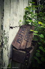 Flower Box (khanusiak) Tags: wood old sign vintage garden wooden peeling box flowerbox