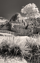 Machu Picchu B&W 2