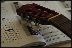 Life Long Learning (VERODAR) Tags: music nikon notes guitar learning musicscores nikond5000 verodar veronicasridar