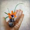 Miniature Oribana 'just Hello'