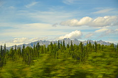 On Road, AK (faungg's photos) Tags: travel blue trees vacation sky usa mountains green nature landscape us scenery scenic ak    onroad