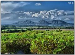 Vistas desde Pals (Nati C.) Tags: naturaleza pals paisaje girona campo nik catalunya hdr montañas cruzadasgold cruzadasi