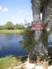 Plant a WIsh: Florida
