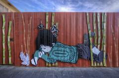 Be Free (J-C-M) Tags: street city urban streetart art girl wall fence graffiti artwork alley nikon artist grafitti artistic drawing free australia melbourne victoria richmond bamboo inner alleyway lane be laneway d200 befree