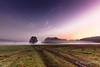 autumn `11 (D.Reichardt) Tags: morning sunset sky tree nature field fog forest germany season landscape europe notherngermany brunshausen dreichardt lightroom5