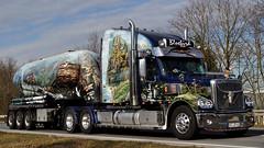 D -Günter Pille >Bluebird< Freightliner Coronado (BonsaiTruck) Tags: silo camion trucks bluebird coronado airbrush bulk günter lorries lkw freightliner spitzer pille citerne powdertank