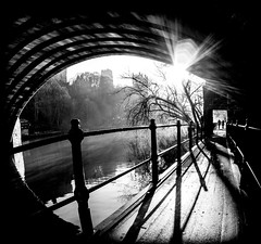 Framwellgate Bridge, Durham City, North East England, UK. (CWhatPhotos) Tags: pictures city uk bridge trees light shadow england sun white fish black tree eye history monochrome silhouette pen river way that lens mono photo blackwhite focus ray foto shadows durham with view riverside bright artistic photos pics path north wide picture sunny pic olympus historic wear riverwear east fisheye have fotos presentation rays manual 35 which silhouetted pathway timeless contain f35 75mm samyang epl5