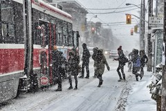 The morning commute (Fifth Business Photography) Tags: winter snow toronto storm ttc snowstorm parkdale