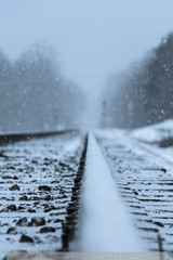 ©SherriMDuncan2014_-3 (sduncan76) Tags: railroad winter snow tracks snowfall snowtrails