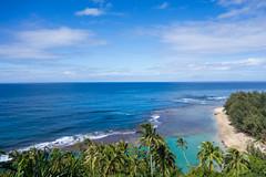02025_RAW (Mr Inky) Tags: hawaii kauai kalalautrail haenastatepark sonyrx100
