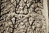 Stone Wall Carving of Deva at Angkor Wat (Patumraat) Tags: world old travel holiday building tourism architecture wonder thailand temple ancient cambodia vishnu god religion ruin culture buddhism siem classical civilization wat hindu asean reise reab