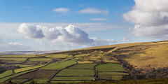 Muted winter palette in patchwork fields on the moorland fringe (Keith in Exeter) Tags: uk winter england landscape nationalpark hill farming fringe devon fields patchwork dartmoor agricultural moorland marginal margin abigfave mygearandme mygearandmepremium mygearandmebronze mygearandmesilver mygearandmegold mygearandmeplatinum mygearandmediamond infinitexposure