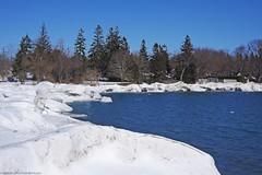 0725 (ontario photo connection) Tags: winter lake snow ontario canada ice newcastle landscape landscapes lakeontario bowmanville durhamregion rurallandscape bondhead