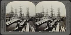 Shipping Lumber, Washington (Boston Public Library) Tags: shipping bostonpubliclibrary lumber bpl stereographs lumberindustry photographicprints