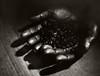 Coffee hands (Giovanni Savino Photography) Tags: coffee hands coffeebeans 4x5camera largeformatphotography 90mmlens coffeeprocessing caffenolc magneticart directpositivepaper ©giovannisavino