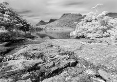 Lake Lilla (B&W) (djryan78) Tags: landscape infrared cloudy australia mountains canon1740l outdoor canon clouds 6d bw forest lakelilla mountain rock blackandwhite water cradlemountainnationalpark blackwhite lake longexposure autumn cradlemountain canon1740 shore dslr 1740 nationalpark tasmania 1740l fall canon6d au