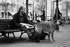 Human's best friend (Valentino Belloni) Tags: dog street streetphotography homeless nikon 35mm bordeaux