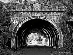 Bowling Tunnel (Rollingstone1) Tags: bowlingtunnel railwaytunnel rock cyclepath scotland bowling railway station history artwork blackandwhite bw monochrome tunnel walkway westdunbartonshire northclydeline trolled