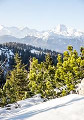 Zimokon'c (PicsbyGrega) Tags: landscape slovenia slovenija velikaplanina winter zima sončendan derezenanogah alps alpe kamnikalps kamniškealpe kamnik–savinjaalps sigma1750mmf28exdcos canoneos60d macesen mountains mountain planine gozd forest sneg snow gorenjska uppercarniola sigma canon