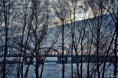 View of the Bridge at Sunset (smuta2006) Tags: winter river riverfront creek backwater dnieper dnipro riverbank bank beach bridge pier railway smokestack chimney funnel island snow snowdrift white icebound ice floe frost frozen water nature natural beauty naturalbeauty tree trunk stem bole rind bark grove copse wood woods forest undergrowth plant bush shrub twig branch sun sunset sunlight light sky cloud gleam glow magic magichour golden goldenhour waterscape landscape scenery kyiv kiev ukraine europe affinityphoto hdr nondslr sony nex nex5r