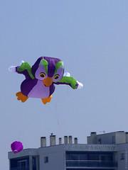 Chouette (Join me on Facebook!) Tags: cerfvolant mer plage vent bercksurmer pasdecalais kite wind sea beach owl